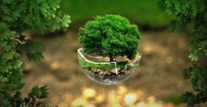 Lokalni liderzy na rzecz ochrony środowiska i klimatu
